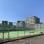 硬式庭球部(テニス)